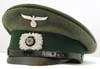 Land Customs enlisted visor