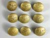 Gold NSDAP Eagle Buttons